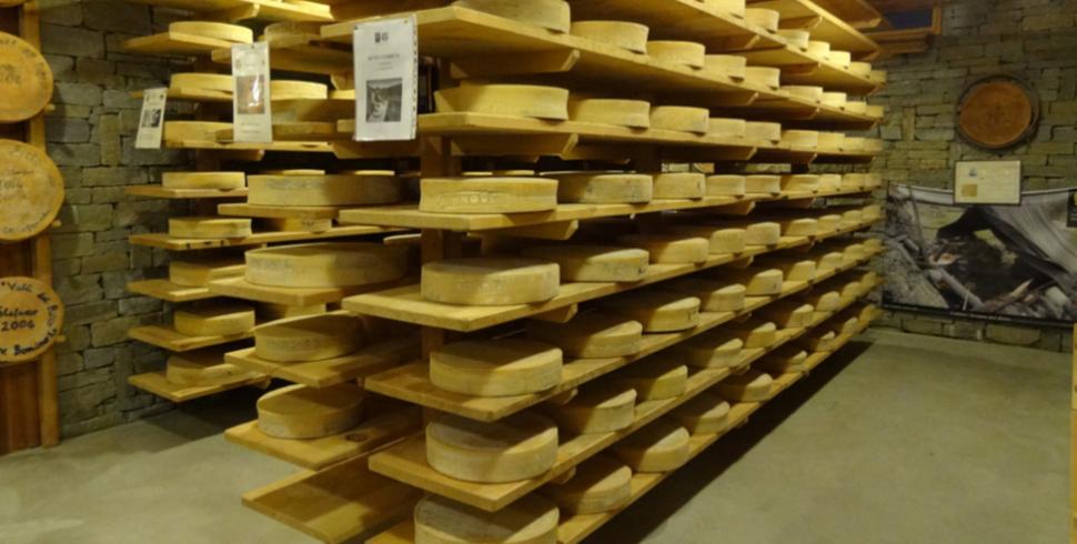 Una tradizione di qualità in Valtellina: sua maestà il Bitto